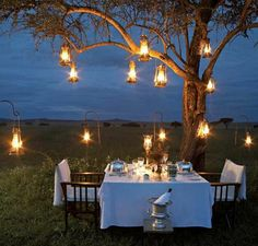 Hanging lanterns in trees creates a romantic vintage ambiance for an outdoor dinner party. Outdoor Dining, Outdoor Spaces, Outdoor Seating, Dining Area, Lakeside Dining, Outdoor Tables, Rustic Outdoor, Outdoor Cushions, Fine Dining
