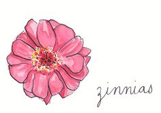 Zinnias tattoo design! ( Thoughts of Absent Friends:meaning)