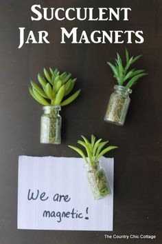 Succulents Crafts and DIY Projects - DIY Succulent Jar Magnets - How To Make Fun, Beautiful and Cool Succulent Cactus Wedding Favors, Centerpieces, Mason Jar Ideas, Flower Pots and Decor http://diyjoy.com/diy-ideas-succulents-crafts