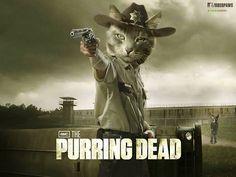 The Walking Dead - Cat