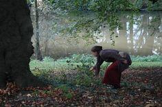 Na het succes van de vorige reeksen, opnieuw: de WILDPLUK JAAROPLEIDING Wil je wel meer leren over eetbare & medicinale wilde planten, maar weet je niet waar je veilig kan en mag plukken? Heb je te...