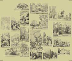 ArtStation - sketches part 3, John Sweeney