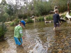 Naturescape Kings Park - Do your kids love sticks, rocks, water & climbing? Then they will love Naturescape!