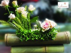 LOS MEJORES ARREGLOS FLORALES A DOMICILIO. Ya está cerca el 14 de febrero día del amor y la amistad, y no hay nada mejor para sorprender a quienes amamos, que un hermoso arreglo floral diseñado especialmente para esta ocasión. Le invitamos a conocer nuestra colección para que pueda obsequiar un detalle distinto a esa persona a quien tanto ama, ingresando a nuestra página de internet www.lilium.mx.