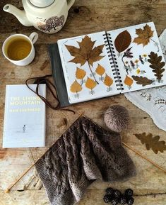 leaves collected in Scotland. Wool is called Oregon coast Hello Autumn, Autumn Day, Autumn Leaves, Winter, Autumn Aesthetic, Knitting For Beginners, Color Themes, Colors, Knit Patterns