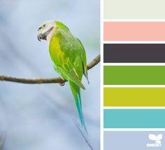 Parrot tones//vintage
