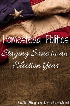 Homestead Politics - http://www.littleblogonthehomestead.com/politics/