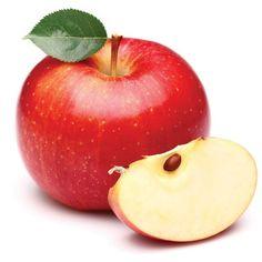 Jabłoń Mini - Malus domestica