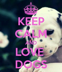 KEEP CALM AND LOVE DOGS. Another original poster design created with the Keep Calm-o-matic. Buy this design or create your own original Keep Calm design now. Keep Calm Posters, Keep Calm Quotes, I Love Dogs, Puppy Love, Keep Calm Wallpaper, Keep Calm Pictures, Keep Calm Signs, Quotes About Everything, Tips & Tricks