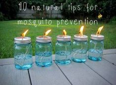 Are you prepared for the pesky #mosquitoes on your camping trip? It can make the difference between an enjoyable and an uncomfortable experience. Here we have compiled 10 safe, non-toxic ideas for preventing the mosquito invasion and saving your #campsites. http://www.highwaywestvacations.com/10-natural-tips-for-mosquito-prevention/
