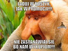 Janusz Nosacz - najlepsze memy o Januszu Nosacz, Grażynie Nosacz, Pioterze Nosacz i somsiedzie. Generator memów o Polaku. Polish Memes, Very Funny Memes, Best Memes, Movie Stars, Language, Lol, Humor, Anime Meme, Happy