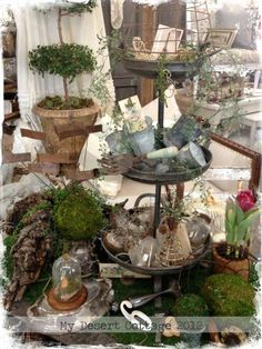 **My Desert Cottage**: Green Acres at Sweet Salvage