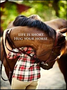 hug your horse                                                                                                                                                                                 More