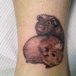 guinea pig tattoo... lol you know it's coming