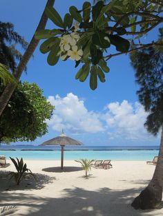 Sri Lanka & Maldives - 03 au 22 mars 2014 - La Grande Vadrouille (F&J)