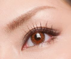 FreshLook Colorblends are the world's most popular trusted brand of color contacts. They are available with prescription (power, myopia). Buy now with free shipping worldwide from EyeCandy's: http://www.eyecandys.com/prescription