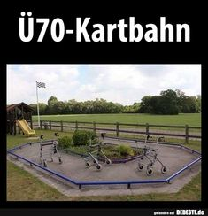 Over 70 kart track Funny pictures sayings jokes Really Funny Pictures, Funny Animal Pictures, Animal Jokes, Funny Animals, Great Ab Workouts, Northwestern University, Hair Quotes, Morning Humor, Good Jokes