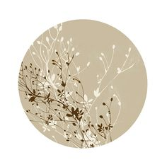 Floral Illustrations by Lauren Bishop ❤ liked on Polyvore featuring backgrounds, circles, decor, fillers, pictures, round and circular