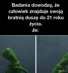 Bratnia dusza Very Funny Memes, Everything And Nothing, I Laughed, Funny Animals, Fun Facts, I Am Awesome, Lol, Humor, Quotes