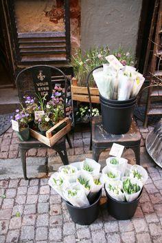 flower shop in Stockholm, Sweden
