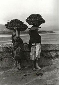 Rapazas levando algas. Noia. 1924