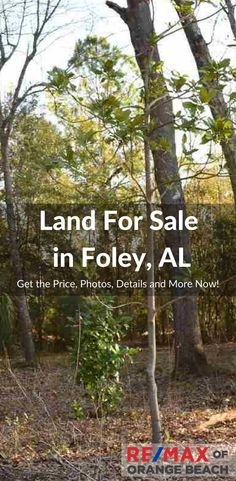 For Sale in Foley, Alabama - Over an acre of land, subdivided and approved to split into 3 building lots. Multiple opportunities here.