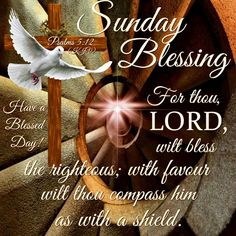 Sunday Blessing, Psalms 5:12- Have a Blessed Day!!