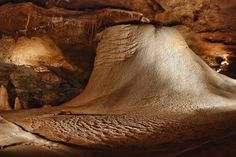 3 Inner Space Caverns is just north of Austin in Georgetown TX Texas Roadtrip, Texas Travel, Travel Usa, Austin Texas, San Antonio, Loving Texas, Central Texas, Texas History, Texas Homes