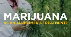 David Permutter MD on Marijuana as Alzheimers treatment. Fla. scientists find THC reduces beta-amyloid proteins found in the disease, however a flawed treatment proposal, as  beta-amyloids are  response to brain inflammation, not a result of such.