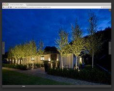 Martin Veltkamp - Website - Spore Creation bno   bureau voor crossmediale communicatie & design
