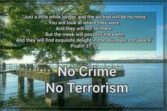 No crime. No terrorism.