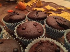 Choco-Chips-Cupcakes