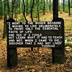 Thoreau after reading, My side of the mountain we are learning more about Thoreau and are finding ourselves turning more towards Waldorf education... we are living more deliberately!