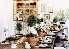 Your centerpiece arrangement should be proportional to the size of the table. Example, a wide dining table can be filled with a wide centerpiece.
