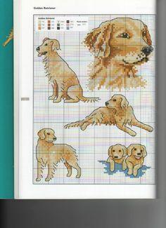 Golden retriever to embroidery Gallery. Golden Retriever Cross, Chien Golden Retriever, Golden Retrievers, Cross Stitching, Cross Stitch Embroidery, Cross Stitch Patterns, Pixel Crochet Blanket, Filet Crochet, Dog Quilts