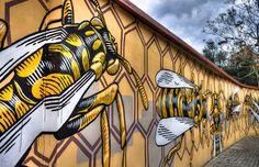 Nido di vespe by Lucamaleonte, Quadraro, Roma Google+