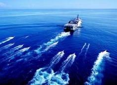 Limit Damaging Seismic Testing in the Atlantic