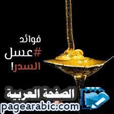 أسعار العسل اليمني افضل انواع العسل اليمني Margarita Glass Coupe Glass Glassware