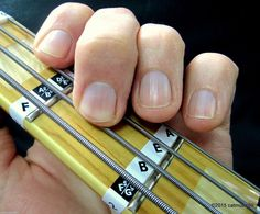Bass Guitar Fretboard Keep in mind Labels Fret Stickers + Online Instructions & Discovering Aids - http://www.guitarstore.wupples.com/bass-guitar-fretboard-note-labels-fret-stickers-online-lessons-learning-aids/
