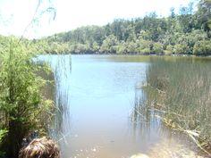 Australien // Fraser Island - Kleiner Tümpel