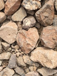 Heart rock among others. Picacho State Park Arizona