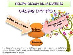 Fisiopatología de la diabetes tipo 2 ensayos