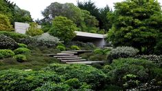 Juan Grimm Paisajismo - Jardín Papudo, Chile.