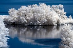 20 Brilliantly Done Infrared Images