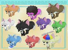 PLUSHIES! If you dont play animal jam play animaljam.com i play it im godog123 look me up!