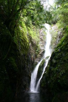 Jungle #paradise Klong Nueng Waterfall Koh Chang