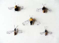 'Bees & Wasps' from 'A Cabinet of Natural Curiosities' by Eleanor Rose Textiles