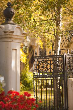 hueandeyephotography: Gate, College of Charleston Campus, Charleston, SC© Doug Hickok All Rights Reserved