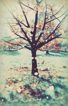 Fantasic Tree http://www.flickr.com/photos/ianton/5128974652/ #art #tree #green #red