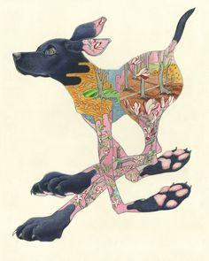 Black labrador running - print animal cards and prints & scr Dog Illustration, Illustrations, Watercolor Illustration, Watercolor Paintings, Watercolour, Labrador Names, World Mythology, Black Labrador, Animal Cards